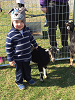2016 Stony Run Egg Hunt - Petting zoo with baby goats and bunnies!